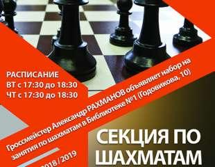Шахматы в Библиотеке №1