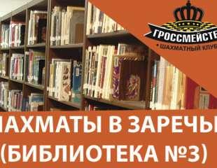 Шахматы в Библиотеке №3