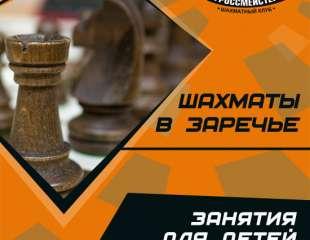 Шахматы в Заречье